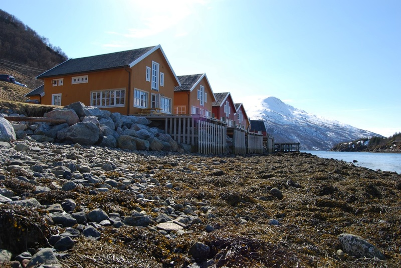 дома для рыбалки в норвегии